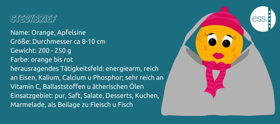 ESS: Praxis für Ernährungsberatung und -therapie Stephanie Siegert Dortmund Orange unterwegs mitnehmen
